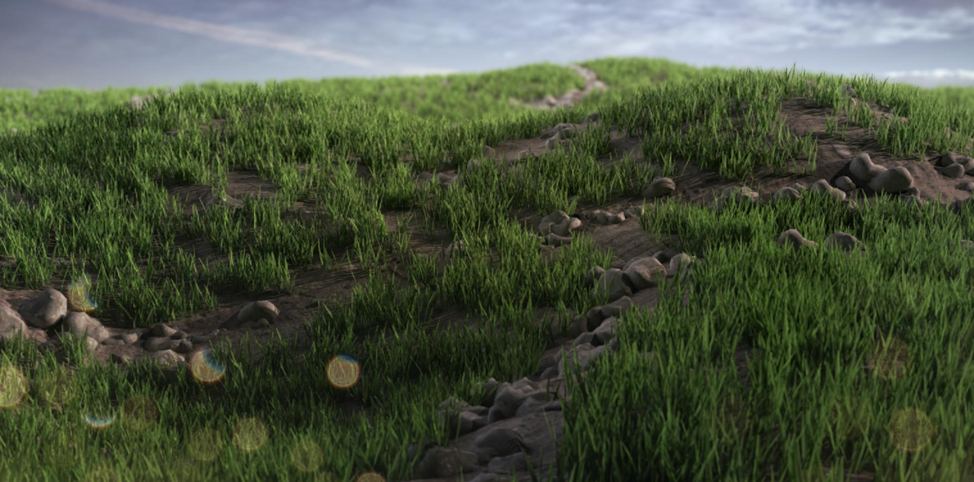 GRASS_test02.jpg